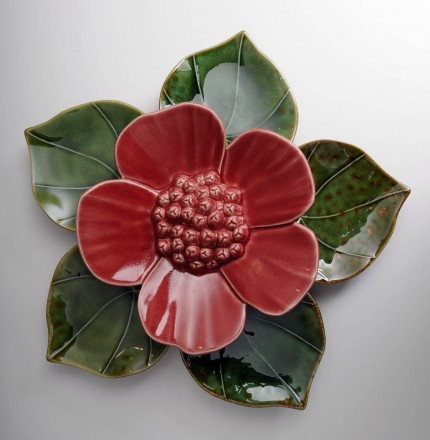 Medium Ribbonwood Flower Red Soda Green Heart Leaves