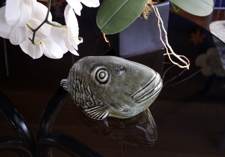 Trophy Snapper on table